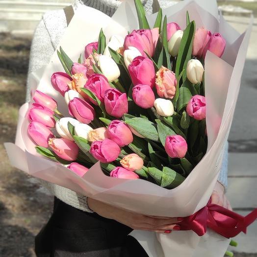 51 нежный французский тюльпан