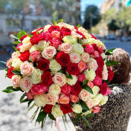 101 rose multicolor