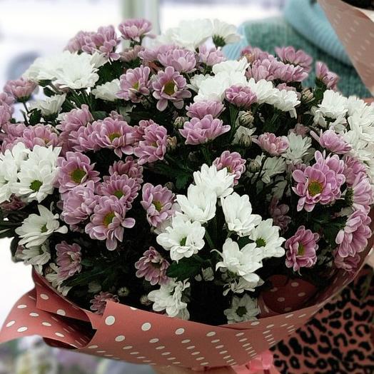 Букет хризантем сантини (15шт)