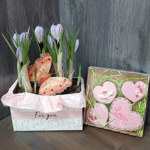 Spring set with crocuses and gingerbread