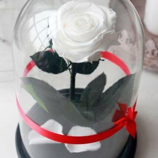 Роза в колбе Premium Белая