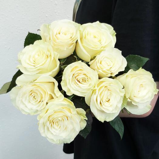 Роза (одногол.) Mondial 60 см - 9 шт