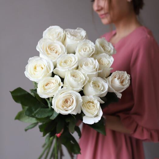 15 роз в ленте