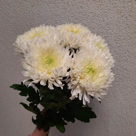Букет из крупной одноголовой хризантемы