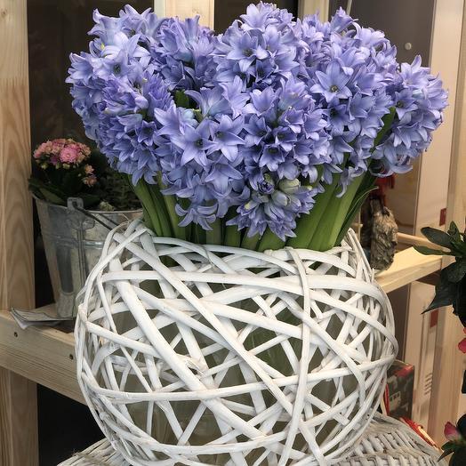 Помпон Вазон: букеты цветов на заказ Flowwow