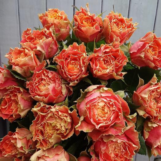 Луиза: букеты цветов на заказ Flowwow