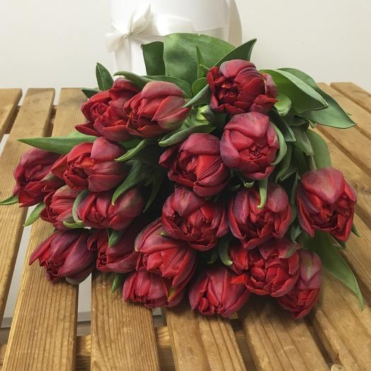 """Букет из 19 тюльпанов """"Red Princess"""""""