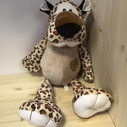 Гепард с шарфиком