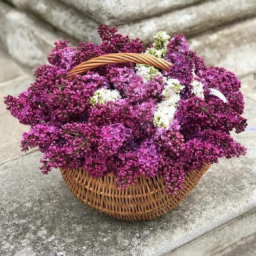 Настроение весна: букеты цветов на заказ Flowwow