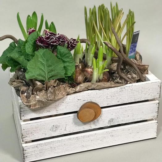 Ящик садовый