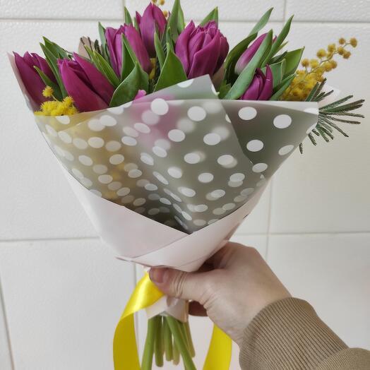 Тюльпан-мимоза