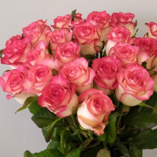 Букет из 25 роз сорта jumilia