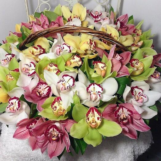 Яркая корзина с орхидеей