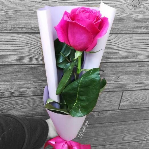 Эквадорская роза в оформлении