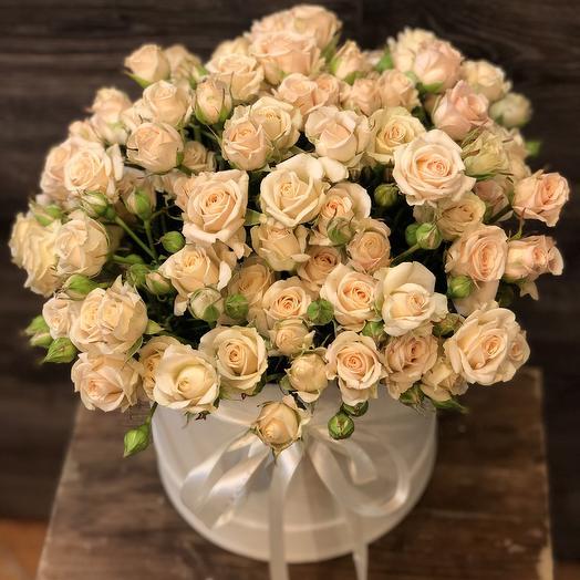 Чайная кустовая роза в коробке