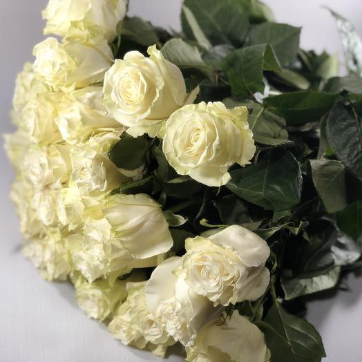 21 белая длинная роза