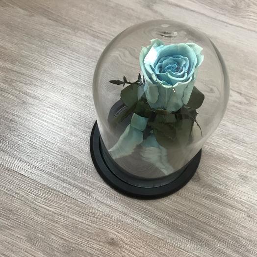 Роза под куполом: букеты цветов на заказ Flowwow