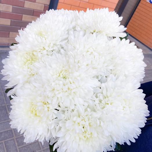 Букет нежнейших хризантем