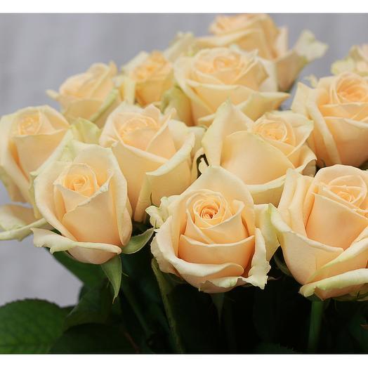 15 кремовых роз 50-60 см (Россия) под атласную ленту