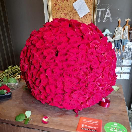 301 красно-бордовая роза