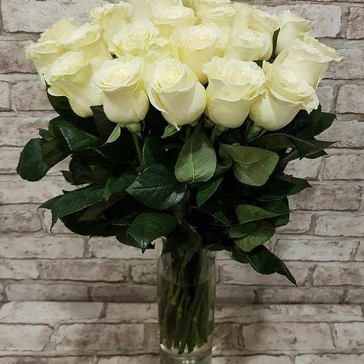 Монобукет 25 роз сорта Полар