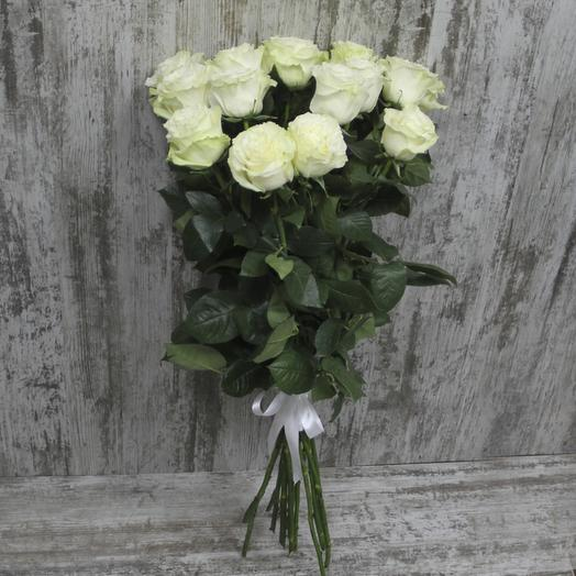 Роза снег