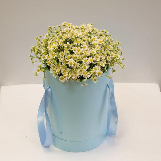 Букет ромашек Солнышки: букеты цветов на заказ Flowwow