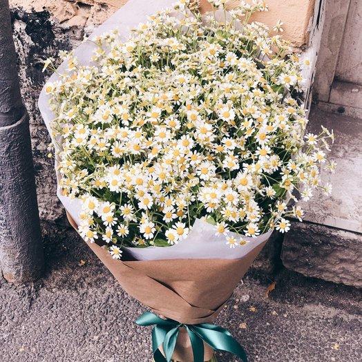 Мурашки от Ромашки: букеты цветов на заказ Flowwow