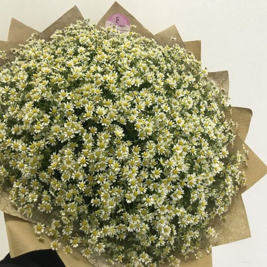 51 ромашка: букеты цветов на заказ Flowwow