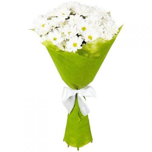 Хризантема в фетре: букеты цветов на заказ Flowwow