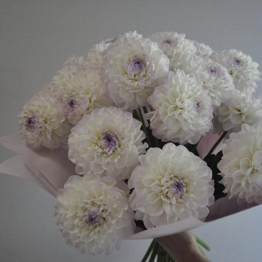 Садовые георгины: букеты цветов на заказ Flowwow