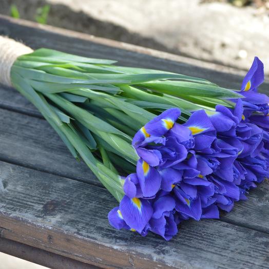 Синие ирисы: букеты цветов на заказ Flowwow