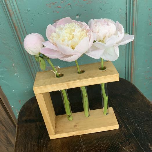 Эстет пионов: букеты цветов на заказ Flowwow