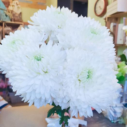 Крупные хризантемы 5шт