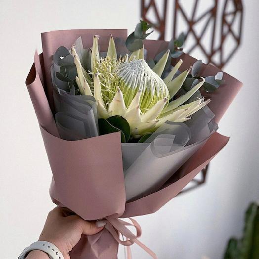 Протея: букеты цветов на заказ Flowwow
