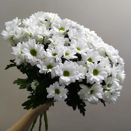 Кустоаая ромашка (11 шт)