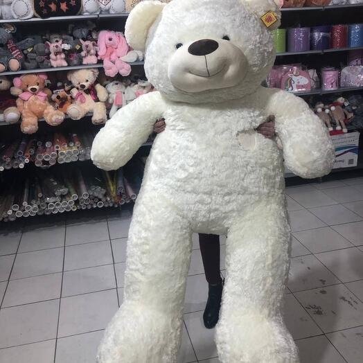 Медведь-гигант