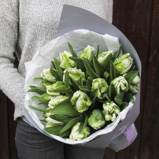 Самые необычные тюльпаны в твоей жизни