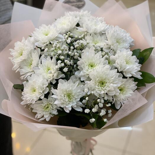 хризантема в белом