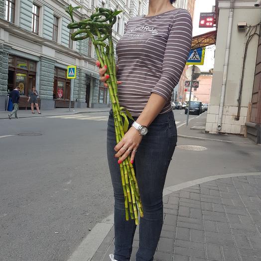 Шикарный бамбук для вашего интерьера: букеты цветов на заказ Flowwow