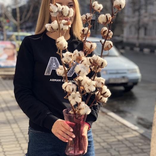 Ваза с хлопоком натуральным: букеты цветов на заказ Flowwow