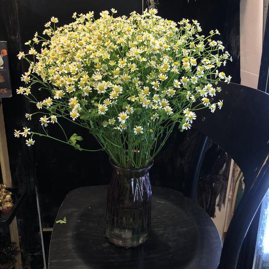 Ромашки в бабушкиной вазе: букеты цветов на заказ Flowwow