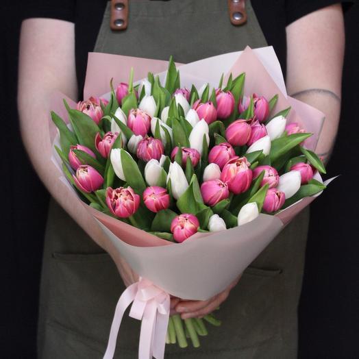 51 Тюльпан Голландия MIX Premium