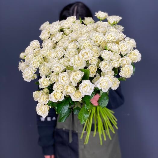 51 Кустовая Роза «Сноуфлейк»