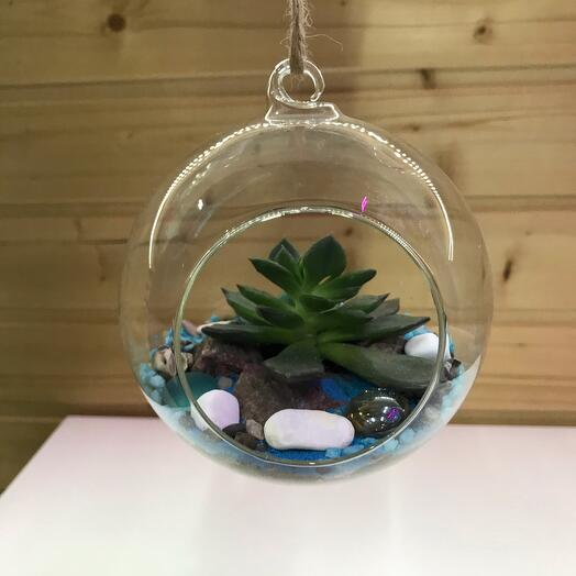 Подвесной флорариум