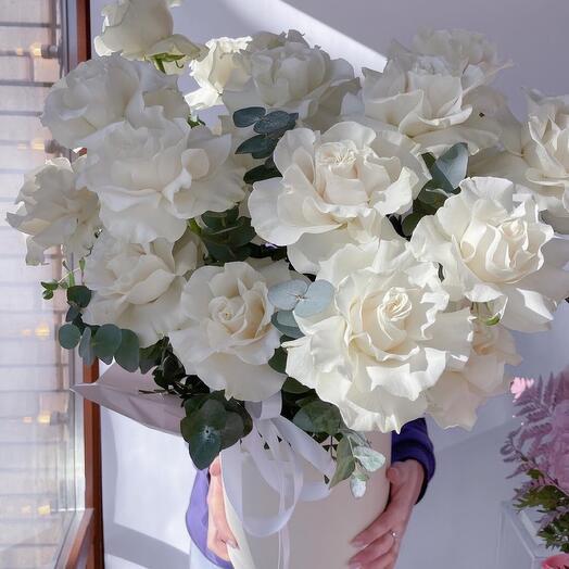 Роскошные Wow розы