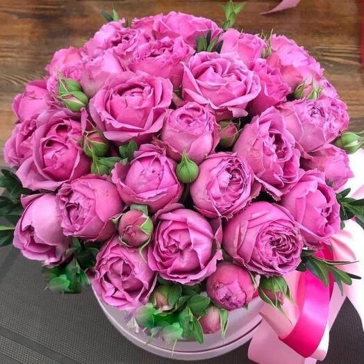 Роза пион в коробке Премиум