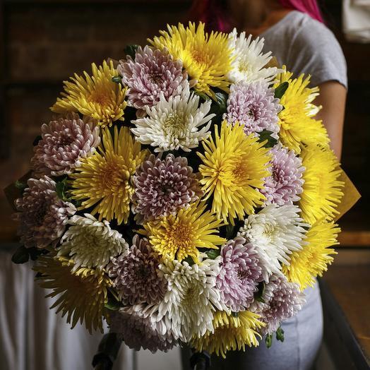 """Букет из """"25 одноголовых хризантем микс"""": букеты цветов на заказ Flowwow"""