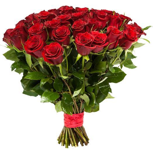 25 роз Explorer 70 см: букеты цветов на заказ Flowwow