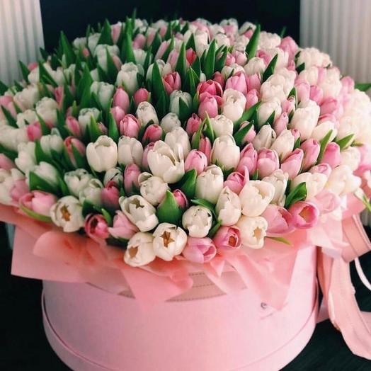 Красивая коробка с 101 тюльпаном